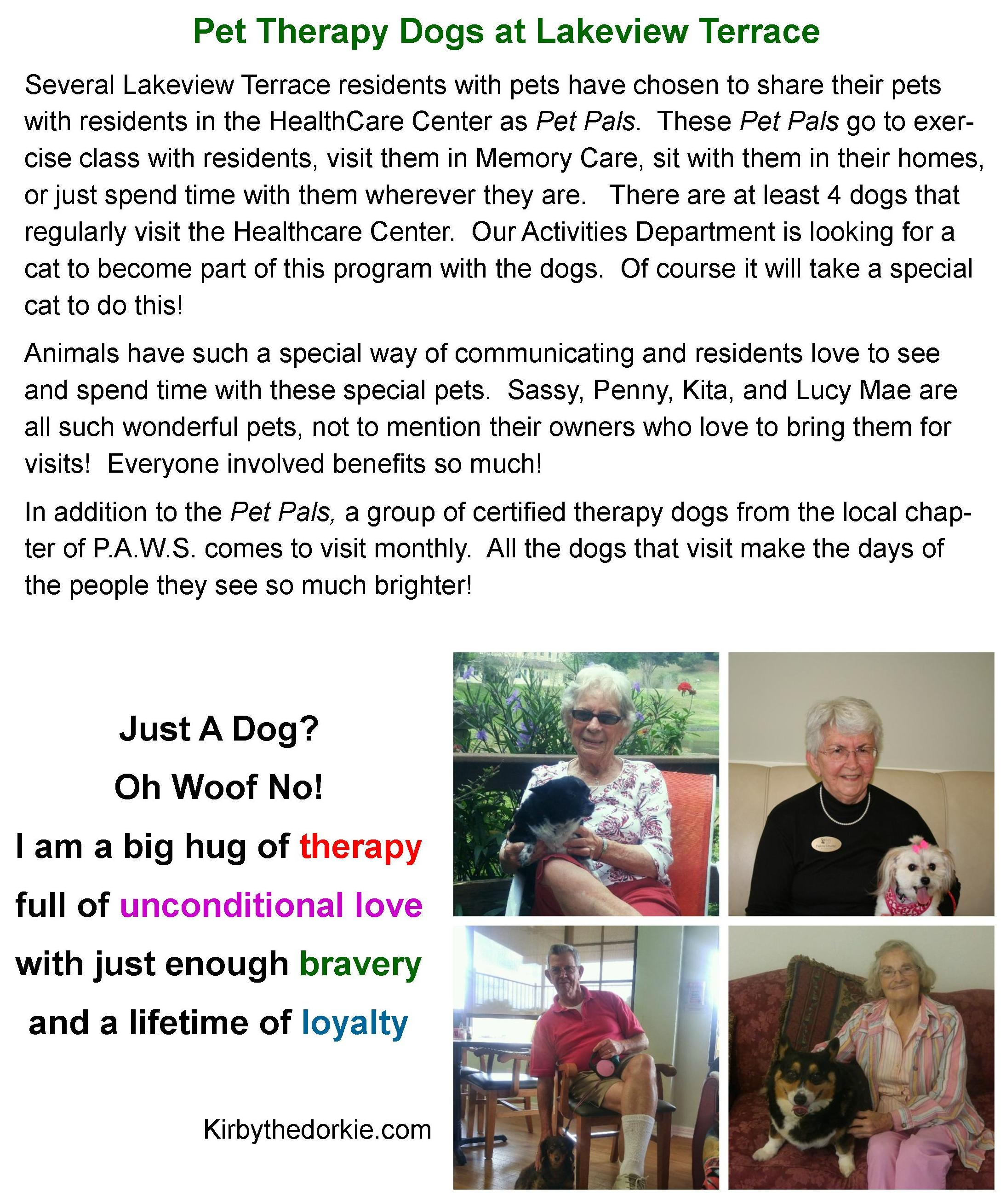 Pet Therapy Dogs at Lakeview Terrace