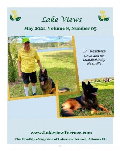 May Lake Views
